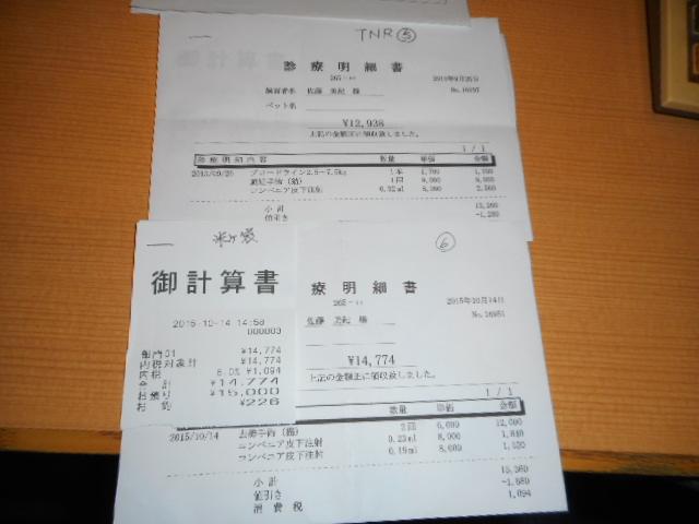 DSCN0102.jpg
