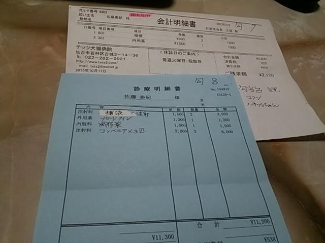 DSC_0049_20151113104628159.jpg