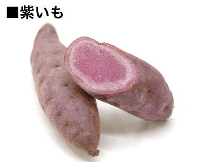 murasaki01.jpg