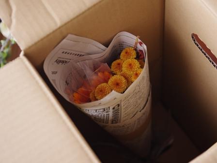 花と料理で楽しむハッピーハロウィン01