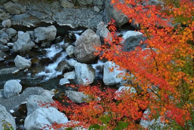 「紅葉始まる渓谷」 (徳島県四季美谷)