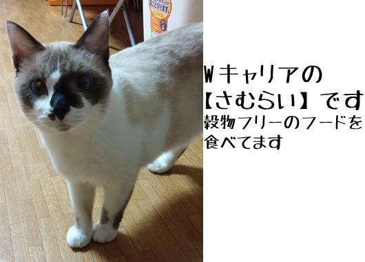 PIC_PSm4IY.jpg