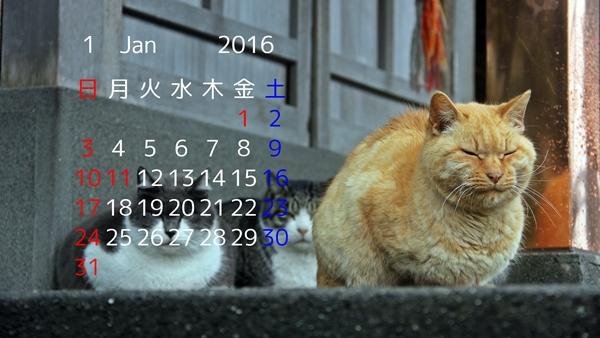 2016 1月 猫 デスクトップカレンダー