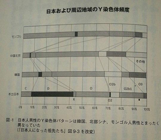 日本および周辺地域のY染色体頻度