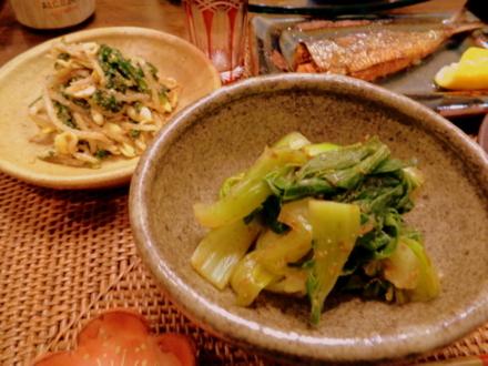 家庭菜園で取れた野菜料理2品