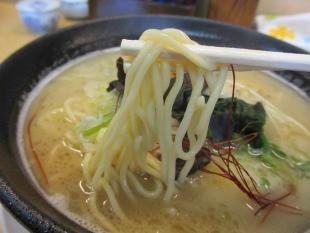 つか乃間 鶏白湯ラーメン 麺