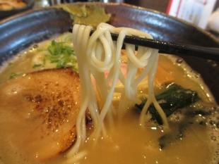 ら麺のりダー 塩豚骨 麺