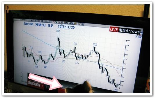 今までテレビに興味を示さなかったウチのブログの看板ニャンコ様が急にユーロ米ドルチャートに反応!!な写真♪