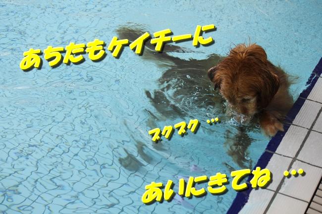 201510292143196a7.jpg