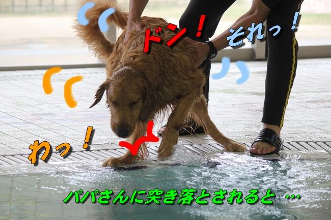 20151125215809ba0.jpg