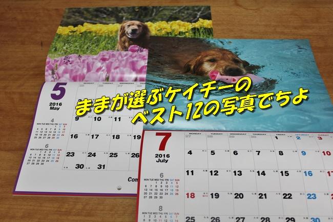 201511281349182b2.jpg
