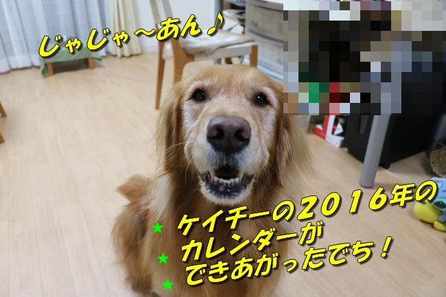 201511281349378c2.jpg