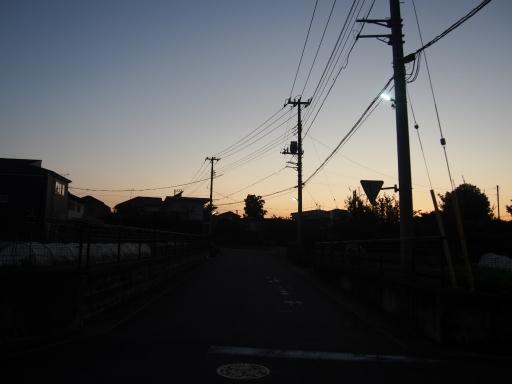 20151018・菩提樹散歩空16