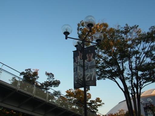 20151018・菩提樹散歩空11
