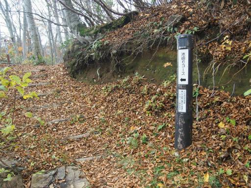 20151025・松之山2-23