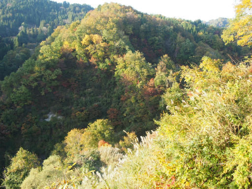 20151025・松之山8-10