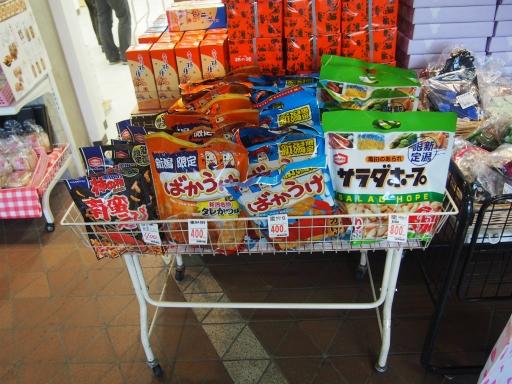 20151025・松之山ビミョー17・まつだい駅にて