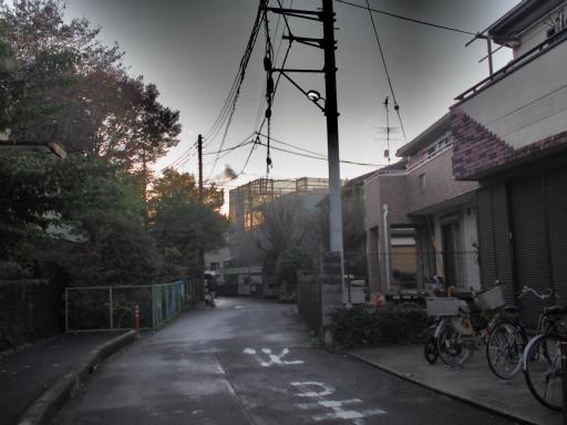 20151115・小春日和22・ドラマチックトーン
