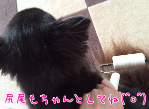 201510312340060f3.png
