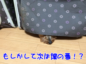 201510312344061ce.png