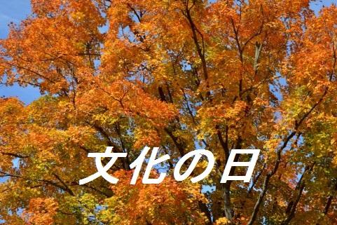 20151102023004f0e.jpg